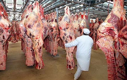 beef carcasses