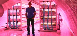 Subterranean Farm to Harvest 2.5 Acres of Produce 100 Feet Below Ground Level