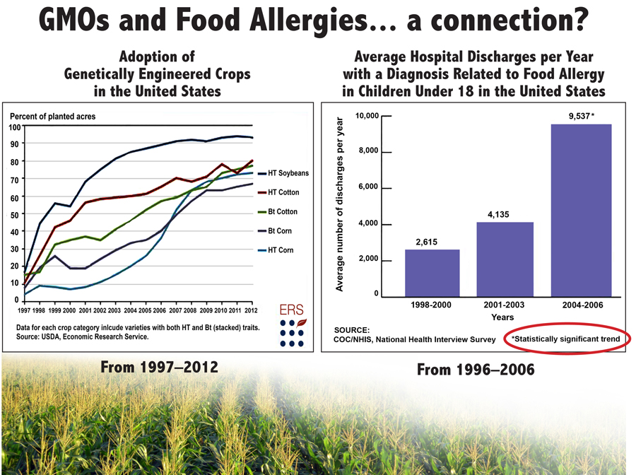 """the importance of gmo awareness to avoid health risk factors and allergies Genetically modified organisms, or gmos, are any living thing that has had its genetic material altered in some way through human scientific interference this does not refer to """"selective breeding,"""" such as when certain crops are selectively bred by gardeners over time to withstand heat, for instance, or the process by which different dog breeds."""