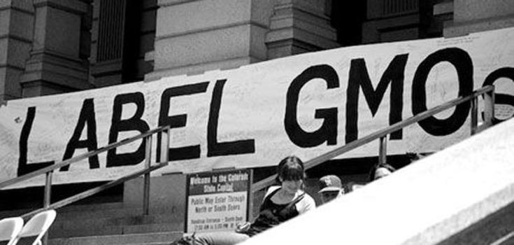 GMO-Labeling_735_350