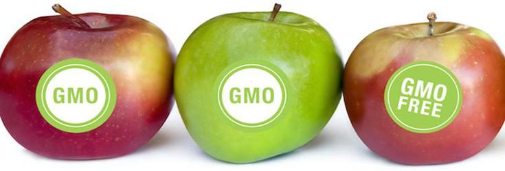 Survey Reveals Americans Don't Trust Scientists on GMOs
