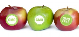 FDA Won't Make Food Companies Label GM Plant Foods