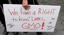 Bill Demanding GMO Labeling Introduced in Rhode Island