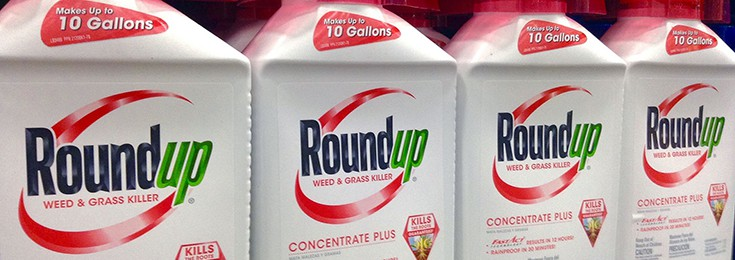 Glyphosate-Monsanto-Roundup-735-260