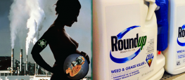 Are Pesticides Really in Breast Milk? Monsanto-Study Says No...