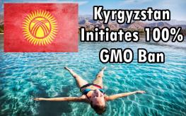 Kyrgyzstan gmo ban