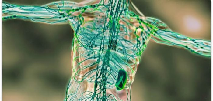 The 1 Best Way To Cleanse The Lymphatic System