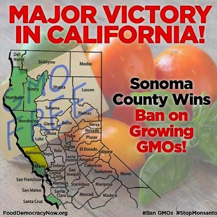 More California Residents Vote To Ban GMOs