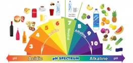 Which Promotes Healing -- Drinking Alkaline Water or Eating an Alkaline Diet?
