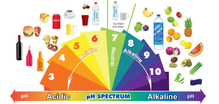 acidic-alkaline-phchart_735_350