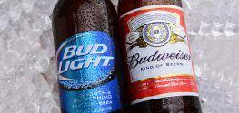 Going Green: Anheuser-Busch to Use Only Renewable Energy Sources by 2025