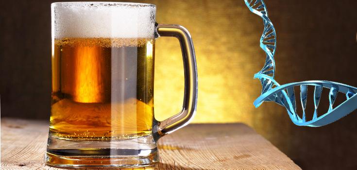 alcohol-beer-mug-dna-735-350