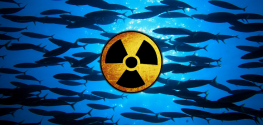 Fishermen Slam TEPCO for Silence on Cesium-Water Dumped in Pacific