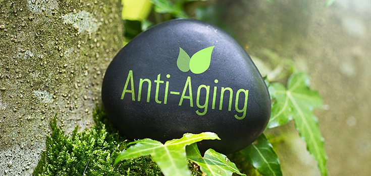 a study on the anti aging effect of metformin Fda approves anti-aging drug trial  targeting aging with metformin,  the study found that those treated with metformin fared better than those treated with the.
