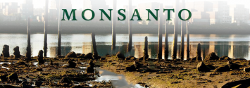 Breaking: Seattle Joins Major US Cities to Sue Monsanto for Toxic PCB Contamination
