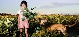 One Photograph Sparks Pesticide Revolution in this Argentinian Town