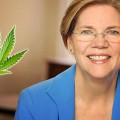 article elizabeth warren marijuana 735-350
