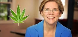Senator Urges CDC: Study Marijuana, Help End Painkiller Epidemic