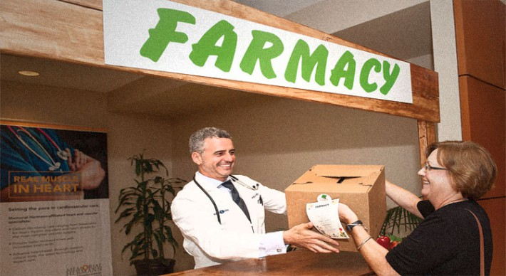 article-farmacy-stand-2