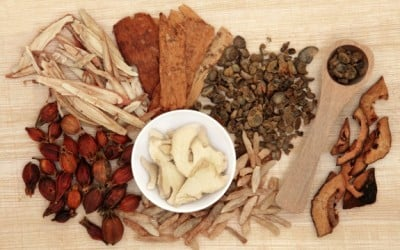 what is astragalus good for