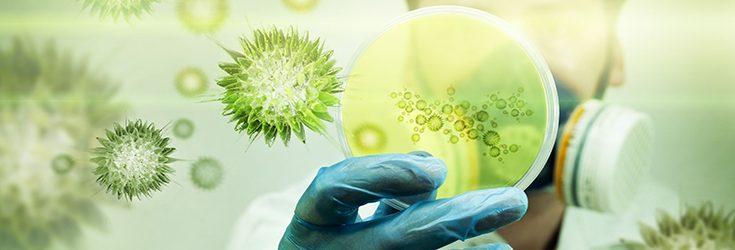 World Leaders Meet to Finally Address Antibiotic Resistance Crisis