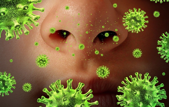 bacteria sickness
