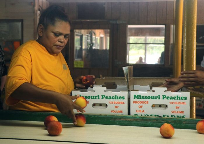 Monsanto Is Being Sued By Missouri's Largest Peach Grower