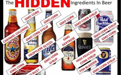 beer ingredients
