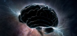 "Company Looks to Freeze a Living Human Brain to ""Resurrect"" it by 2045"
