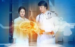 brain scientists