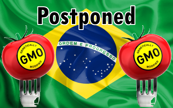 brazil_flag_gmo_delay