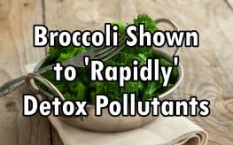 broccoli detox