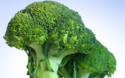 broccoli stems