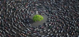 4 Ways Our Congested Roadways Hurt the Environment
