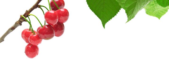 cherries_Tart_715_250