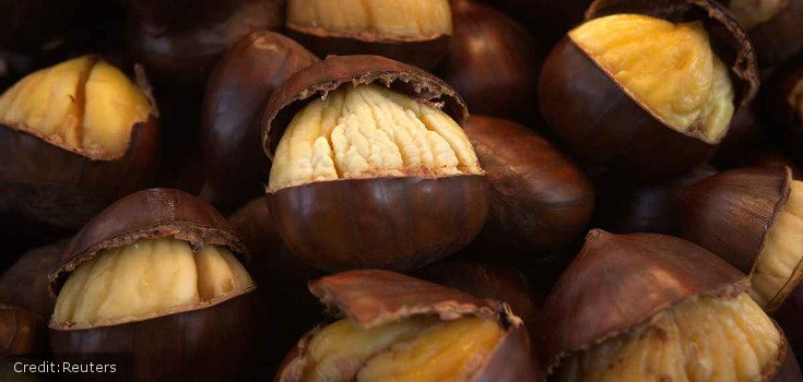 chestnuts-reuters_735_350_credit