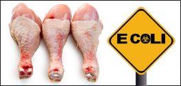 chicken and e. coli