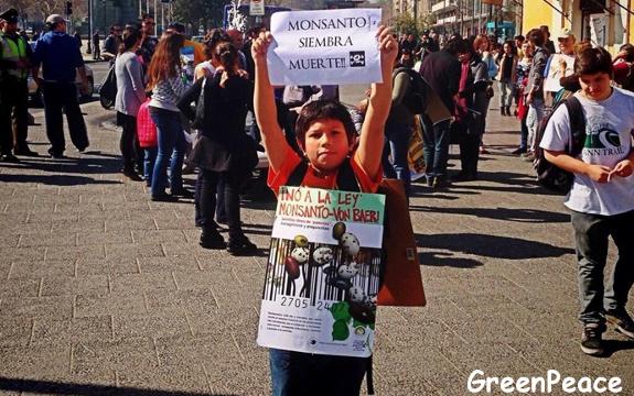 Chile Monsanto