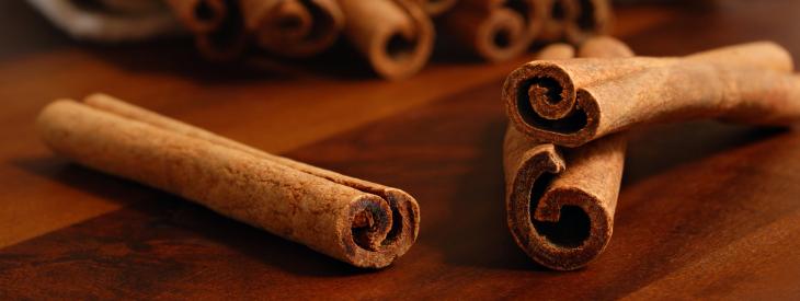 cinnamon_730_275