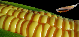 Newly Discovered Danger of High Fructose Corn Syrup is Alarming