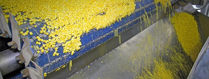 corn-food-processing-plant-735-280