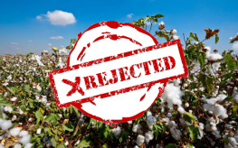 cotton field rejected