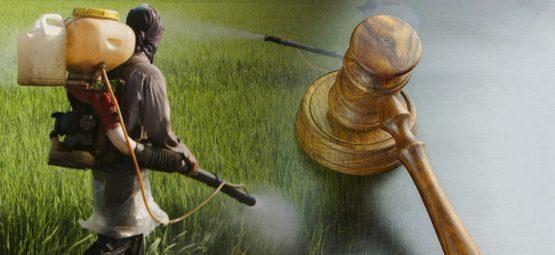 Judge Could Overturn $289 Million Verdict in Monsanto Roundup Case