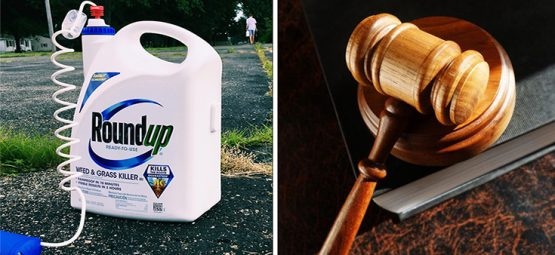 Former Groundskeeper Will Accept $78 Million Award in Roundup Trial