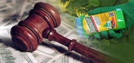 Widow Sues Monsanto for Husband's Wrongful Death