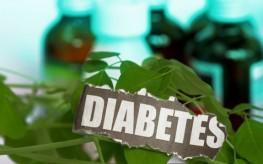 diabetes plant