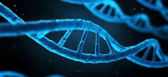 genes and depression