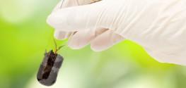 GMO Amino Acids Become Newest Biotech Creation