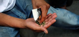 Lawmakers in New York Call on Online Retailers to ban the Sale of Synthetic Marijuana