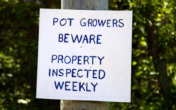 pot grower